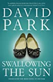 Swallowing the Sun by David Park front cover