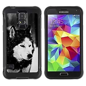 Paccase / Suave TPU GEL Caso Carcasa de Protección Funda para - Dog Siberian Husky Alaskan Malamute Winter Pet Animal - Samsung Galaxy S5 SM-G900