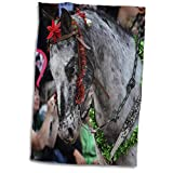 3dRose Susans Zoo Crew Animal - Horse Christmas décor Riding in Parade - 15x22 Hand Towel (TWL_294146_1)