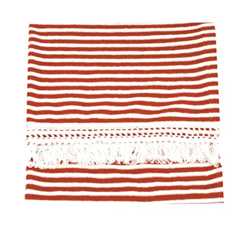 CushyChic Outdoors 38 x 68 Blanket Throw with Fringe in Tangier/White -