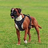 Rabbitgoo Adjustable Dog Harness No Pull 3M Reflective Vest with Handle High Visibility Reinforced Straps Easy Control Harness for Large Dogs(Black)