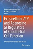 Extracellular ATP and adenosine as regulators of endothelial cell function: Implications for health and disease