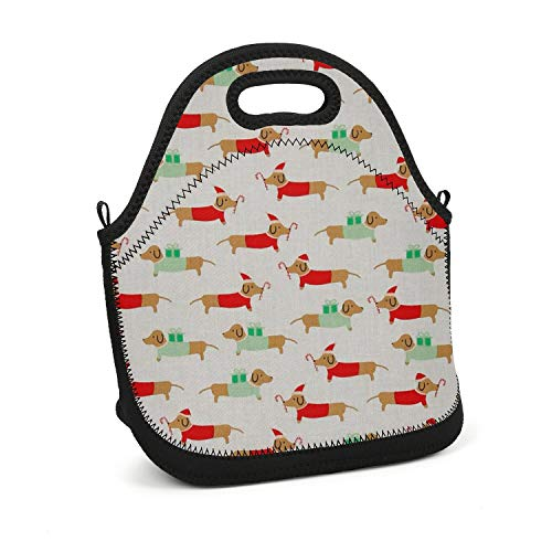 Hiunisyue Lunch Box Christmas Darlings Dachshunds Insulated Lunch Bag for Women, Men and Kids - Reusable Soft Lunch Tote for Work School Picnic