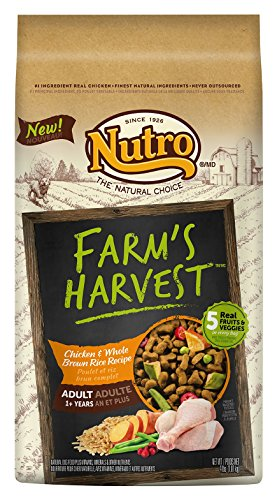 NUTRO Farm's Harvest Adult Chicken and Whole Brown Rice 4 lbs.