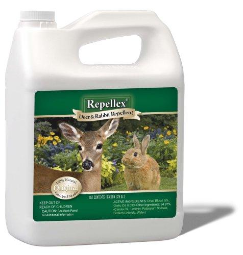 deer-rabbit-repellent-1-gal