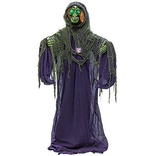 Halloween Haunters Life-Size Standing Scary Wicked Witch with Green Flashing Bloodshot Light-Up Eyes Prop Decoration - Creepy Old Evil Green Face Zombie Haunted House Graveyard Entryway Display]()