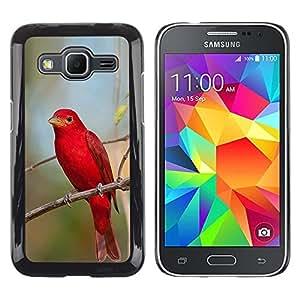 Caucho caso de Shell duro de la cubierta de accesorios de protección BY RAYDREAMMM - Samsung Galaxy Core Prime SM-G360 - Songbird Nature Branch
