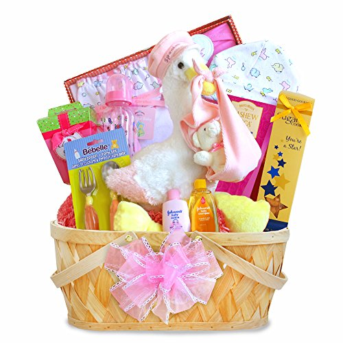 California Delicious Gift Basket, Special Stork Delivery Baby Girl (Stork Baby Gift Baskets)