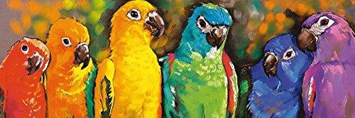 Artland Qualitätsbilder I Bild auf Leinwand Leinwandbilderautomatic9751 Papageien Tiere Vögel Malerei Bunt A7MD