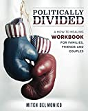 Politically Divided: A How-To Healing Workbook for