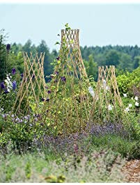 expandable willow trellis large - Garden Trellises
