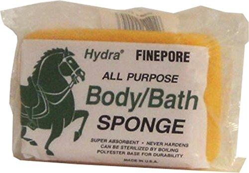 Body Hydra Sponge - SPONGEBODYSQUAREFSB1