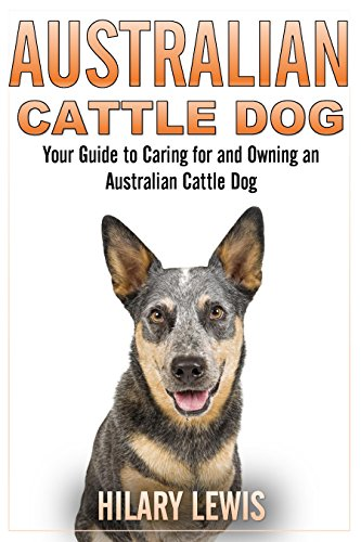 Australian Cattle Dog - A Guide to Taking Care of an Australian Cattle Dog ()
