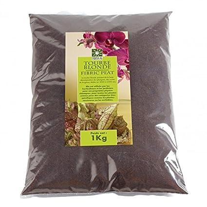 Turba Rubia Natural con perlita Solo para Plantas carnívoras