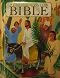 My Catholic Picture Bible, James Harrison, 0882711911