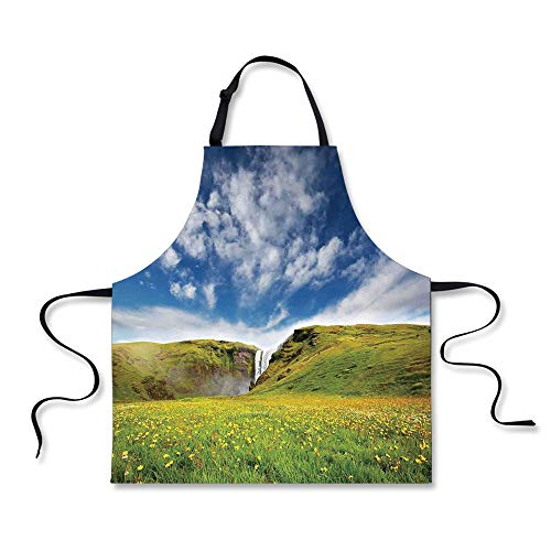 iPrint BBQ Apron,Waterfall,Waterfall Landscape with Daisies in The Meadow Nature Theme Home Decor,Green Blue White, Apron.29.5