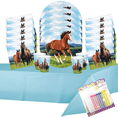 - Horse and Pony Party Supplies Pack - Dinner Plates Luncheon Napkins Cups and Table Cover Serves-16 with Birthday Candles - (Bundle for 16)