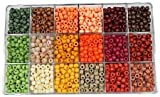 Package of 2300 Pieces Assorted Earthtone Color Pony Beads in Plastic Storage Box