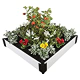Rectangular Raised Garden Size: 8'' H x 48'' W x 48'' D