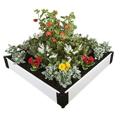 Rectangular Raised Garden Size: 8'' H x 48'' W x 48'' D by Frame It All
