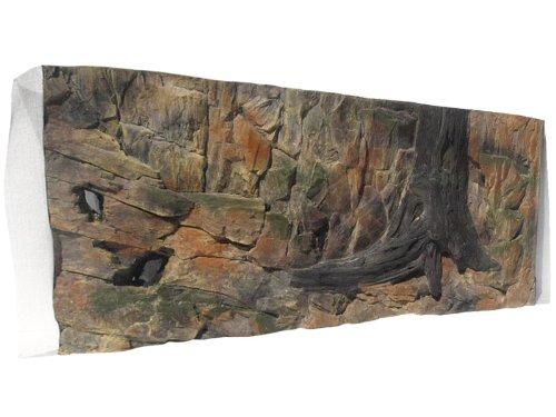 Acquario Parete posteriore 3d standard 120 x 60 cm con Robi Zoo
