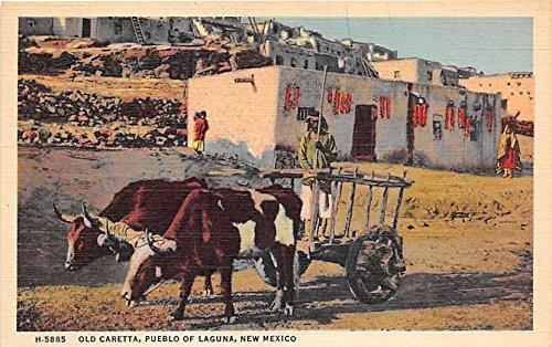 Fred Harvey Publishing Pueblo of Laguna, New Mexico, NM, USA Indian Postcard