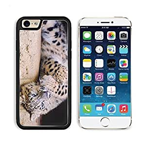 Design for iphone 6 Snow Leopard Spotted Big Cat Playful iPhone 6 TPU Case Customized