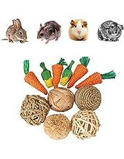 Generic 11-częściowy zestaw zabawek świnek morskich, zabawka dla małych zwierząt, zabawka dla zwierząt domowych, zabawka dla królików / chomik