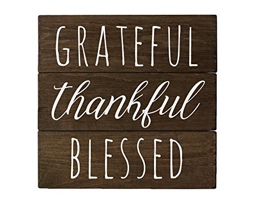 Elegant Signs Grateful Sign Wall Decor with Thankful Blessed Made in USA -