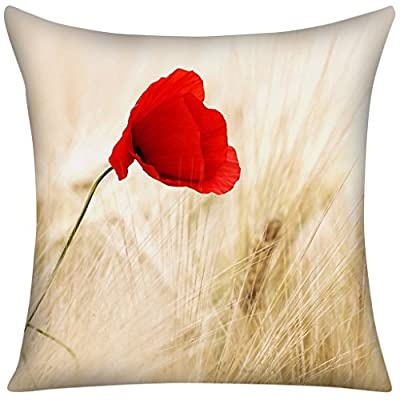 Throw Pillow Cover for Sofa or Bedroom 18x18
