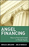 img - for Angel Financing: How to Find and Invest in Private Equity book / textbook / text book