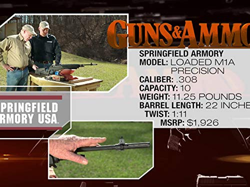 Springfield M1A Loaded Precision Rifle