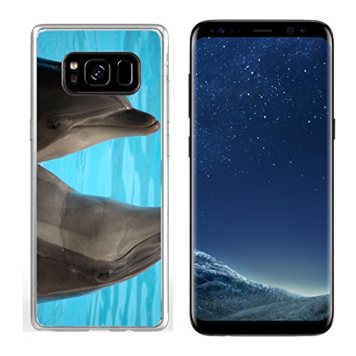 MSD Samsung Galaxy S8 Clear case Soft TPU Rubber Silicone Bumper Snap Cases IMAGE ID 19721954 Dolphins dancing in water during show in Loro Parque in Tenerife Spain