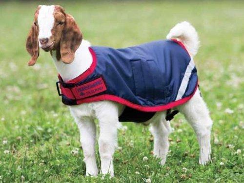 Horseware Ireland Waterproof Goat Rug Blanket Cover Navy Red - XX Large by Horseware