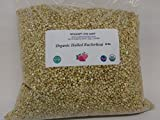 Buckwheat, 13 lbs (thirteen pounds), USDA Certified Organic, Non-GMO, Hulled, Whole, (Groats), BULK.