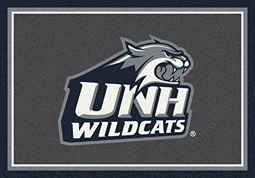 NCAA Team Spirit Door Mat - New Hampshire Wildcats, 44'' x 68'', Multi by Millilken