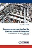 Exergoeconomics Applied to Thermochemical Processes, Borja Xicoy Almirall, 3844319107