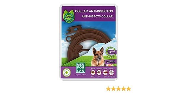 TODOBICHOS - COLLAR ANTI-INSECTOS PARA PERROS 60CMTS MENFORSAN: Amazon.es: Productos para mascotas
