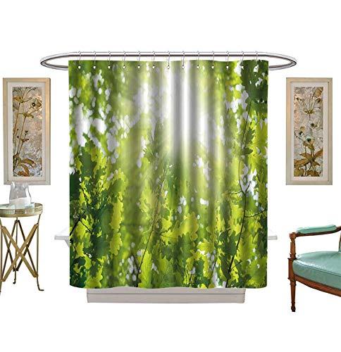 Miki Da Shower Curtains Fabric Ecological Background Green Leaves of Oak,Bright Sun Bathroom Decor Set with Hooks Size:W72 x L96 inch
