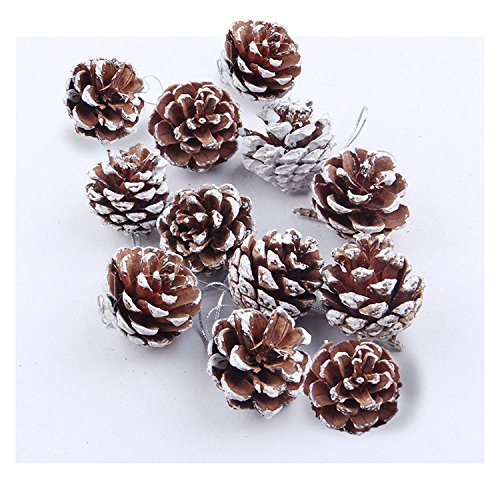 Natural Pine Cones, SOMAN 12 pcs Real Snow Pinecones Ornaments 2.4 Inch Tall for Christmas (Charlotte Robe)