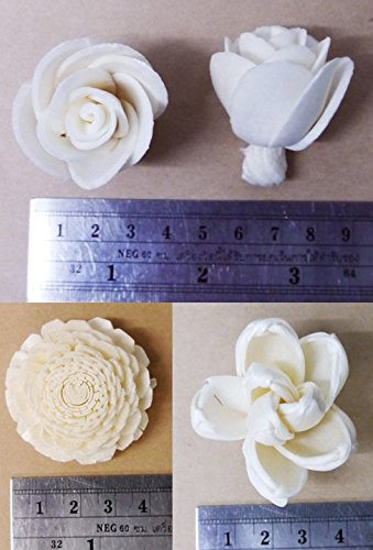 20 Balsa Wood Sola Diffuser Flowers with 5in. Rattan Reeds, mix of Jasmine, Lotus, Rose, Mini Rose, Opium Poppy by Zap (Image #4)