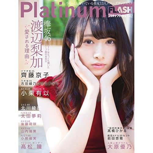 Platinum FLASH Vol.2 表紙画像