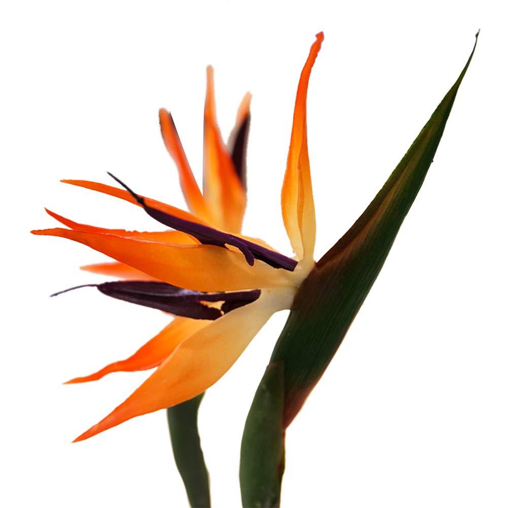 TELLW 人工パラダイス 鳥 クレイン 造花 ウォッシュドフラワーアート H:88CM,D:13CM オレンジ B07GLDXMNN オレンジ
