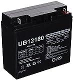 Upg 12 Volt Car Batteries Review and Comparison