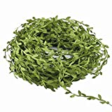 Hecaty 132 Ft Artificial Vines, Artificial Eucalyptus Leaf Garland DIY Greek Wild Jungle Decorative Botanical Greenery for Baby Shower Home Wall Garden Wedding Party Wreaths.(132 ft)