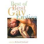 Best of Best Gay Erotica 2 | Richard Labonte (editor)