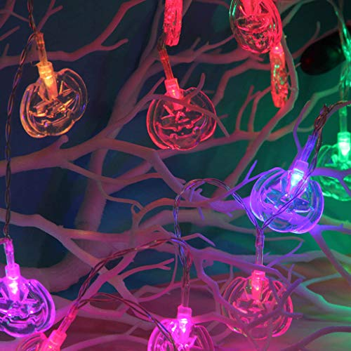 Firefly Holiday Package - CCOOfhhc Halloween String Lights,Pumpkin Light Lamp