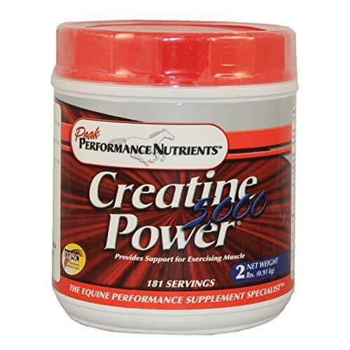 Creatine Power 5000 – 2 LB