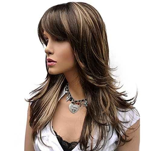 HJYS Wig in Beauty HIGHT QUALITY WIGS Wig Long Straight Layered Wig Brown with Blonde Highlights Synthetic Full Wigs