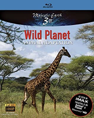 Wild Planet Animal Adaptation